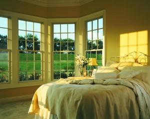 renewal windows